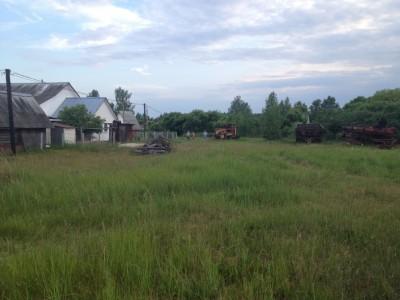 Рязанская область, Клепиковский район, д. Дмитриево